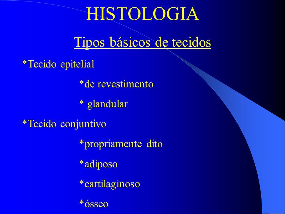 Tipos básicos de tecidos