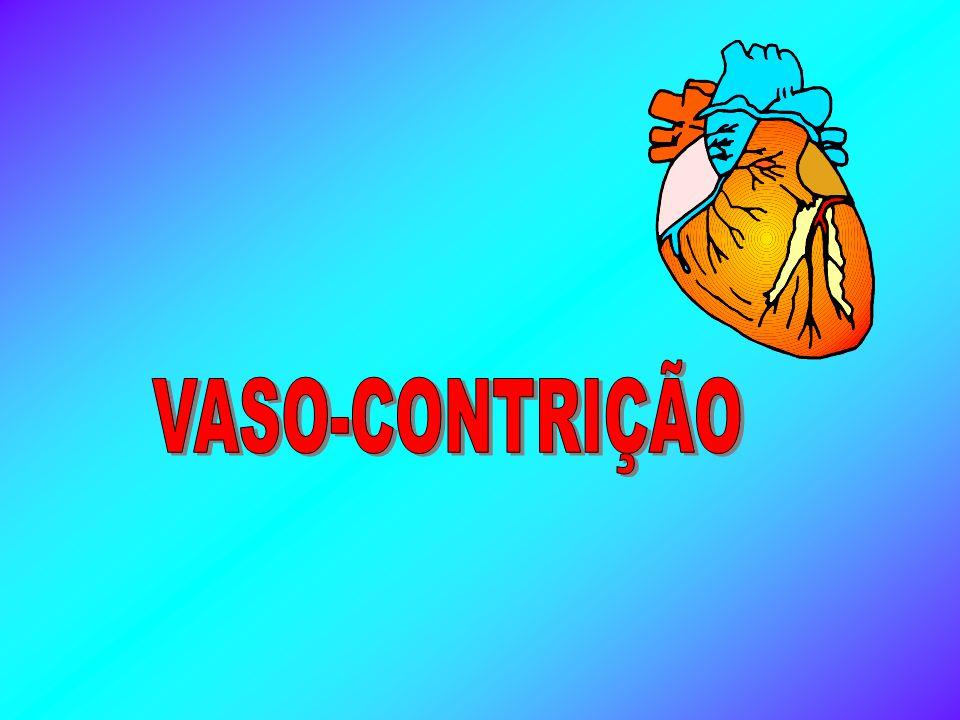 VASO-CONTRIÇÃO
