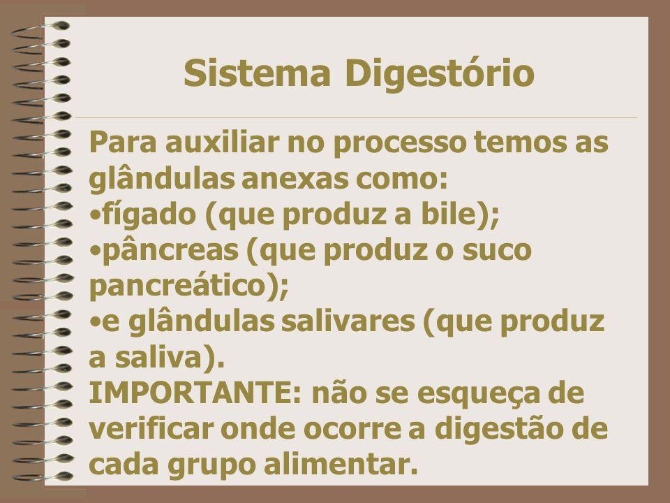 Sistema Digestório Para auxiliar no processo temos as glândulas anexas como: fígado (que produz a bile);