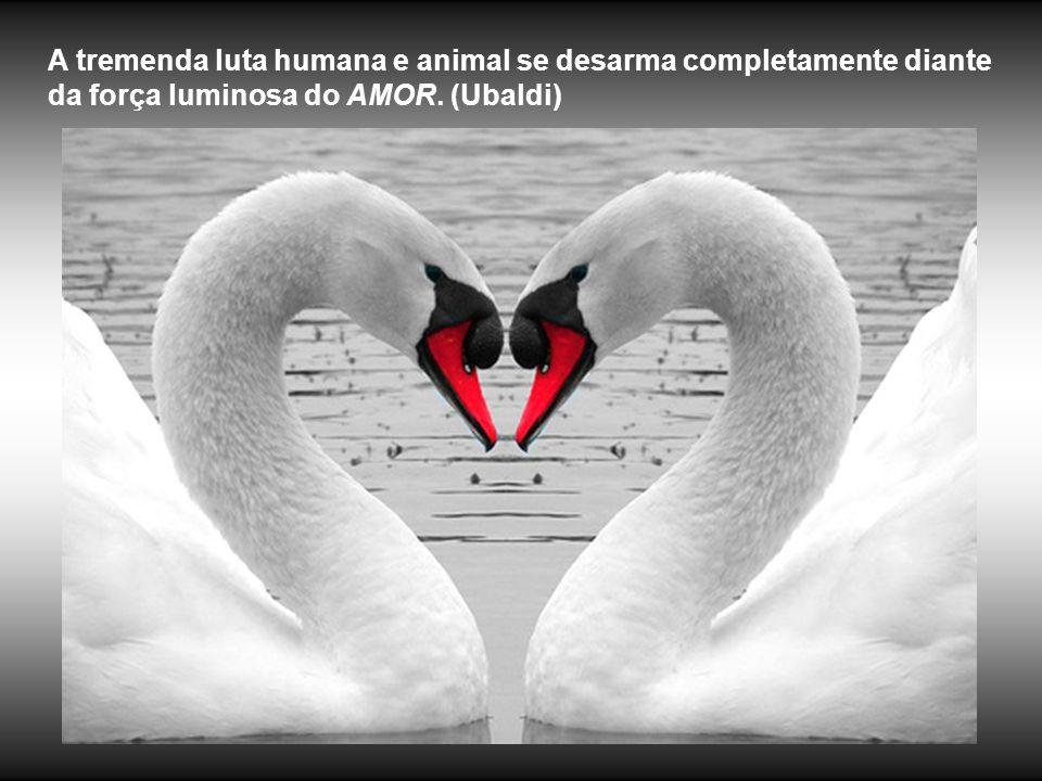 A tremenda luta humana e animal se desarma completamente diante da força luminosa do AMOR. (Ubaldi)