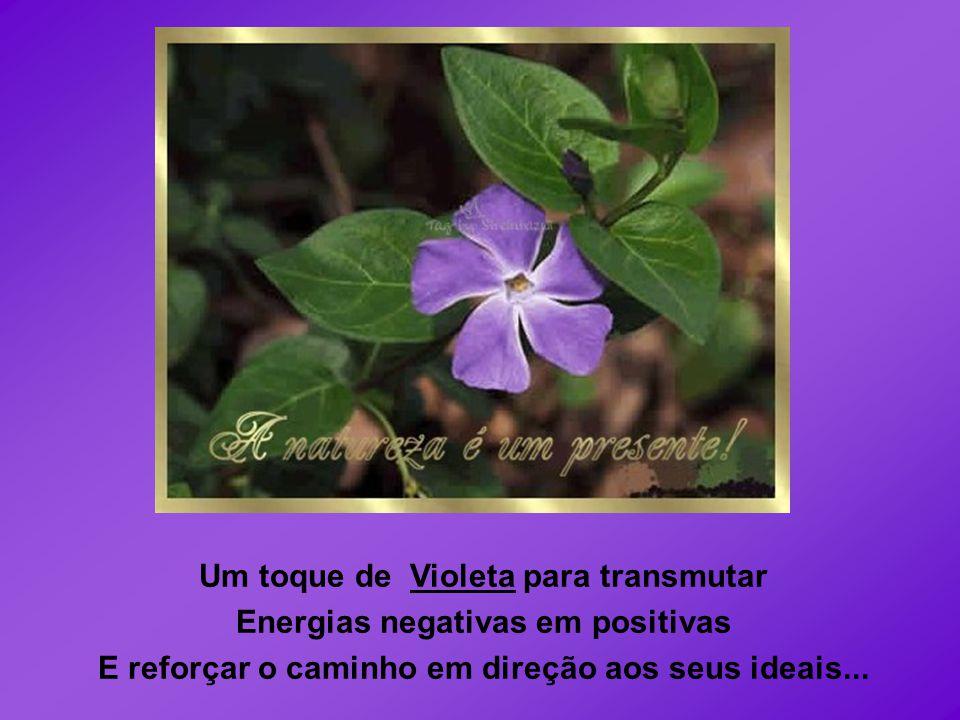 Um toque de Violeta para transmutar Energias negativas em positivas