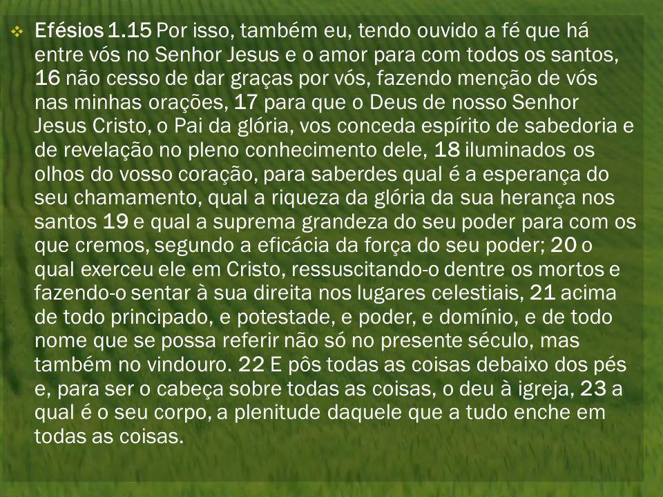 Efésios 1.15 Por isso, também eu, tendo ouvido a fé que há entre vós no Senhor Jesus e o amor para com todos os santos, 16 não cesso de dar graças por vós, fazendo menção de vós nas minhas orações, 17 para que o Deus de nosso Senhor Jesus Cristo, o Pai da glória, vos conceda espírito de sabedoria e de revelação no pleno conhecimento dele, 18 iluminados os olhos do vosso coração, para saberdes qual é a esperança do seu chamamento, qual a riqueza da glória da sua herança nos santos 19 e qual a suprema grandeza do seu poder para com os que cremos, segundo a eficácia da força do seu poder; 20 o qual exerceu ele em Cristo, ressuscitando-o dentre os mortos e fazendo-o sentar à sua direita nos lugares celestiais, 21 acima de todo principado, e potestade, e poder, e domínio, e de todo nome que se possa referir não só no presente século, mas também no vindouro.
