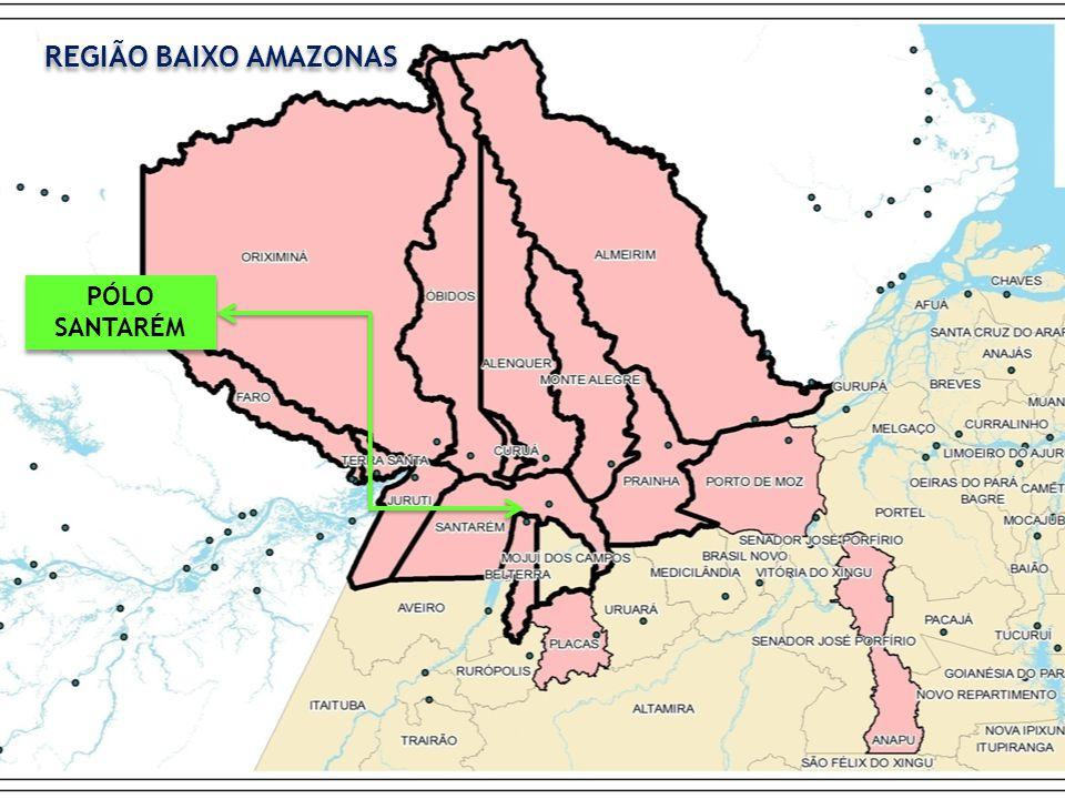 REGIÃO BAIXO AMAZONAS PÓLO SANTARÉM