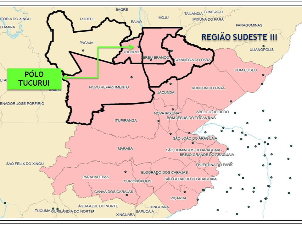 REGIÃO SUDESTE III PÓLO TUCURUI