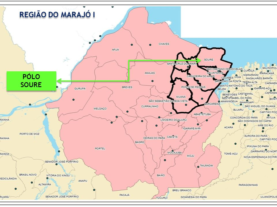 REGIÃO DO MARAJÓ I PÓLO SOURE