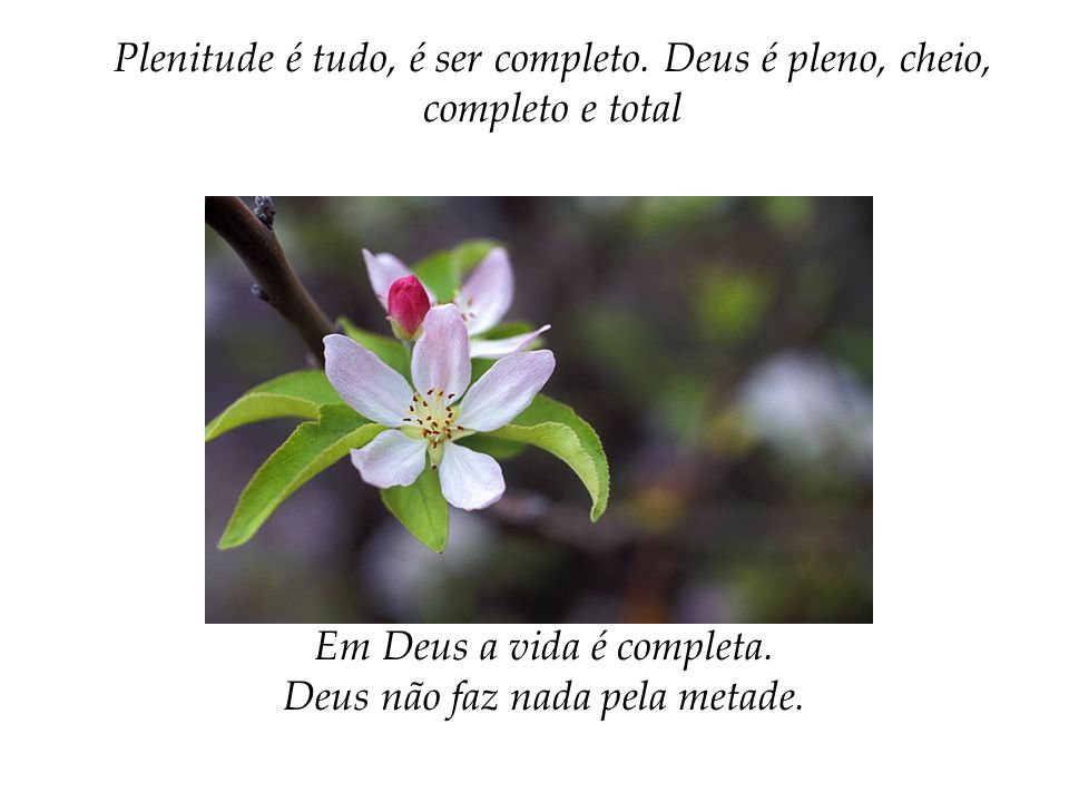 Em Deus a vida é completa. Deus não faz nada pela metade.