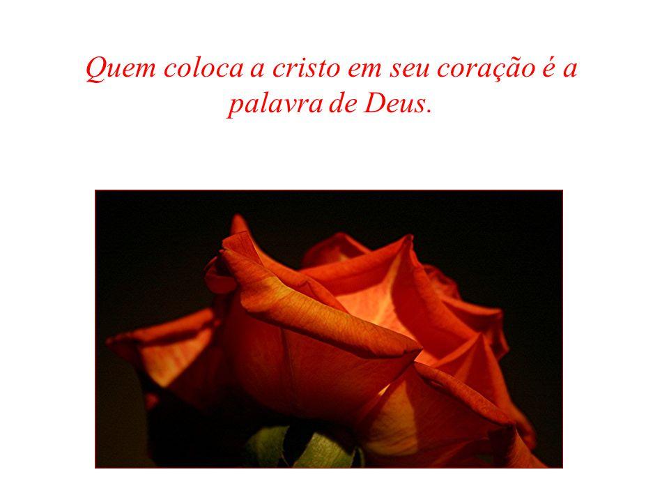 Quem coloca a cristo em seu coração é a palavra de Deus.