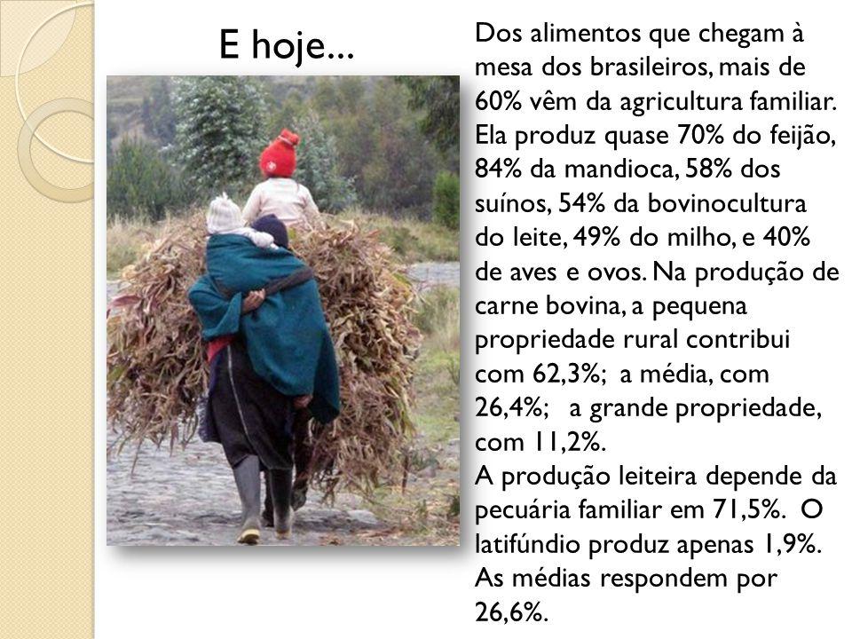 Dos alimentos que chegam à mesa dos brasileiros, mais de 60% vêm da agricultura familiar. Ela produz quase 70% do feijão, 84% da mandioca, 58% dos suínos, 54% da bovinocultura do leite, 49% do milho, e 40% de aves e ovos. Na produção de carne bovina, a pequena propriedade rural contribui com 62,3%; a média, com 26,4%; a grande propriedade, com 11,2%.