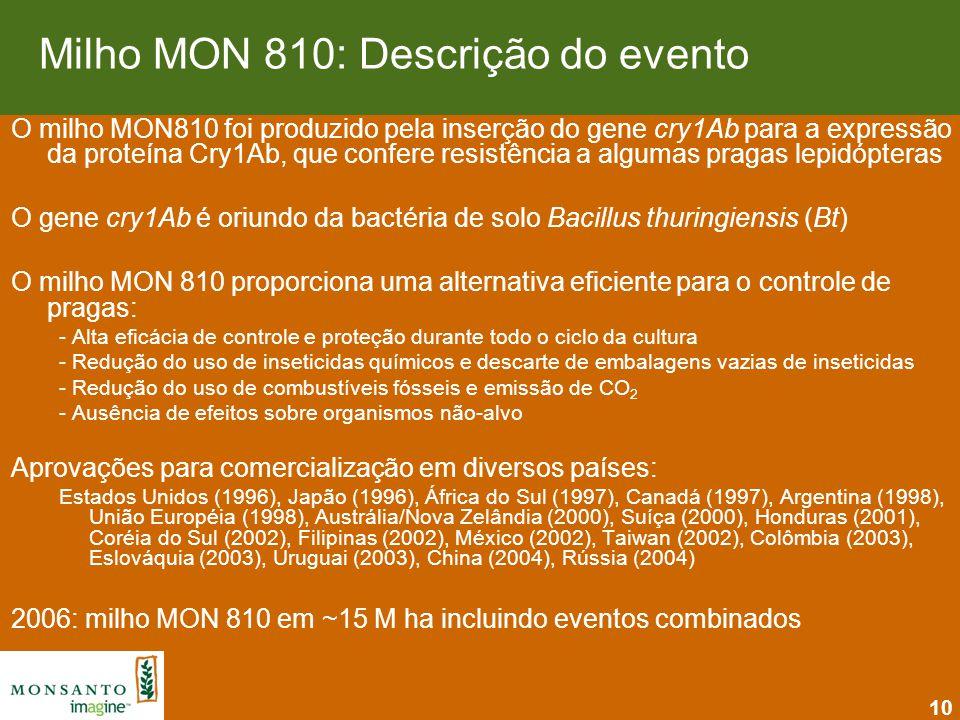 Milho MON 810: Descrição do evento