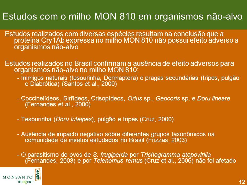 Estudos com o milho MON 810 em organismos não-alvo