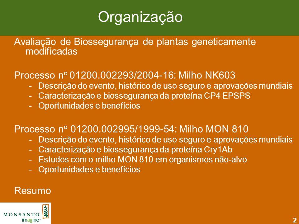 Organização Avaliação de Biossegurança de plantas geneticamente modificadas. Processo no 01200.002293/2004-16: Milho NK603.
