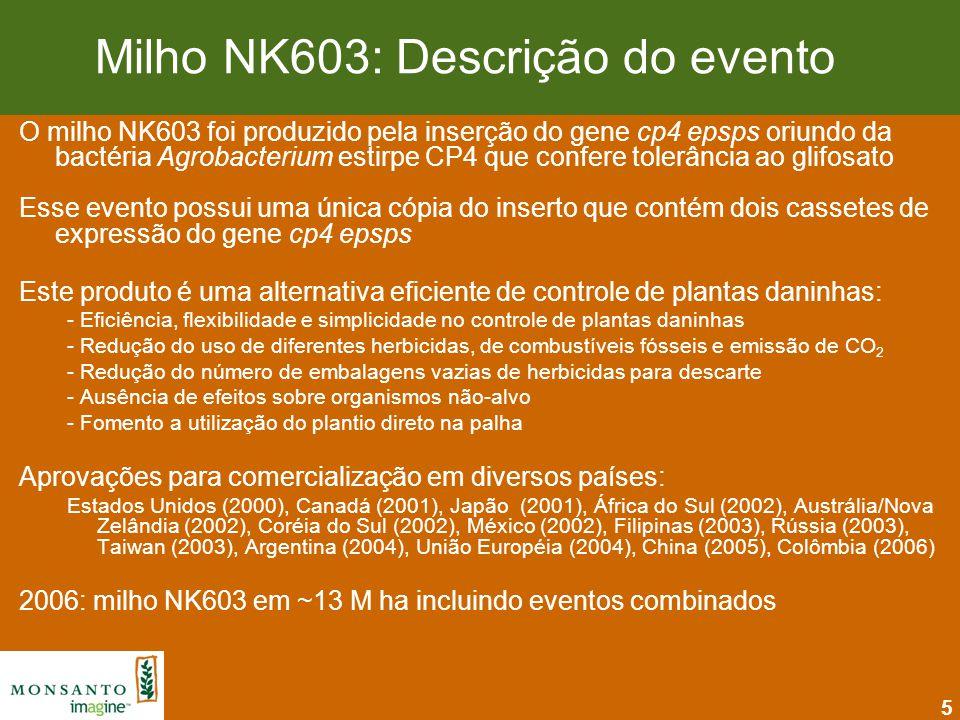 Milho NK603: Descrição do evento