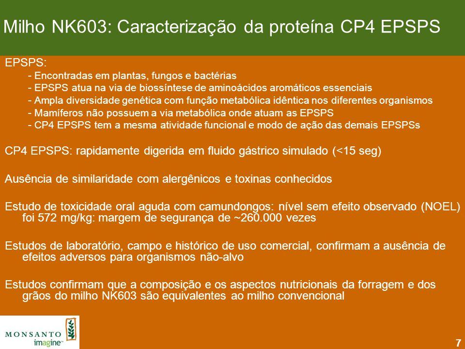 Milho NK603: Caracterização da proteína CP4 EPSPS