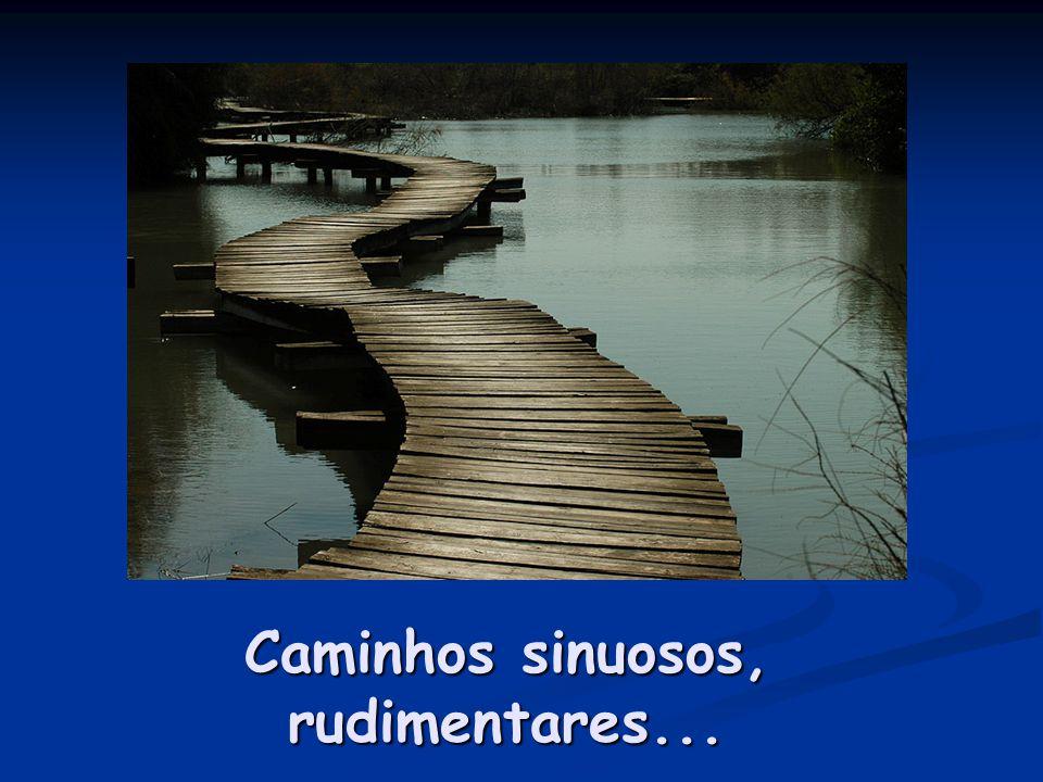 Caminhos sinuosos, rudimentares...