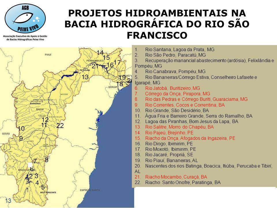 PROJETOS HIDROAMBIENTAIS NA BACIA HIDROGRÁFICA DO RIO SÃO FRANCISCO
