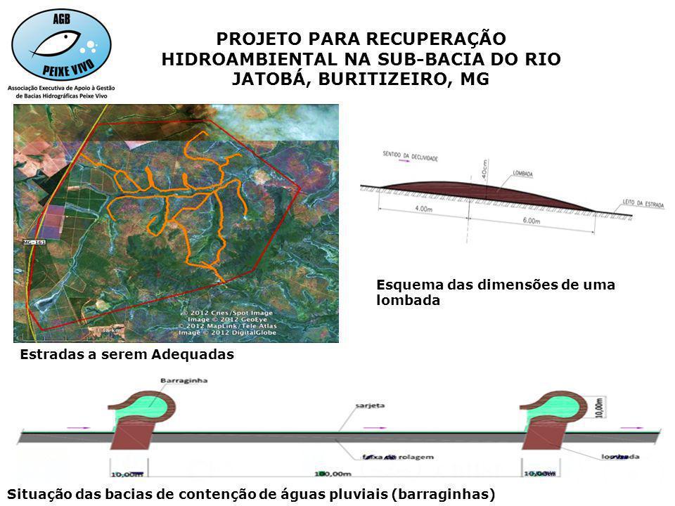 PROJETO PARA RECUPERAÇÃO HIDROAMBIENTAL NA SUB-BACIA DO RIO JATOBÁ, BURITIZEIRO, MG