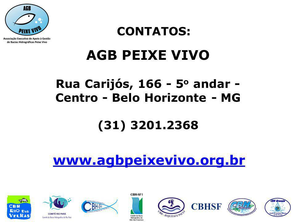 Rua Carijós, 166 - 5o andar - Centro - Belo Horizonte - MG
