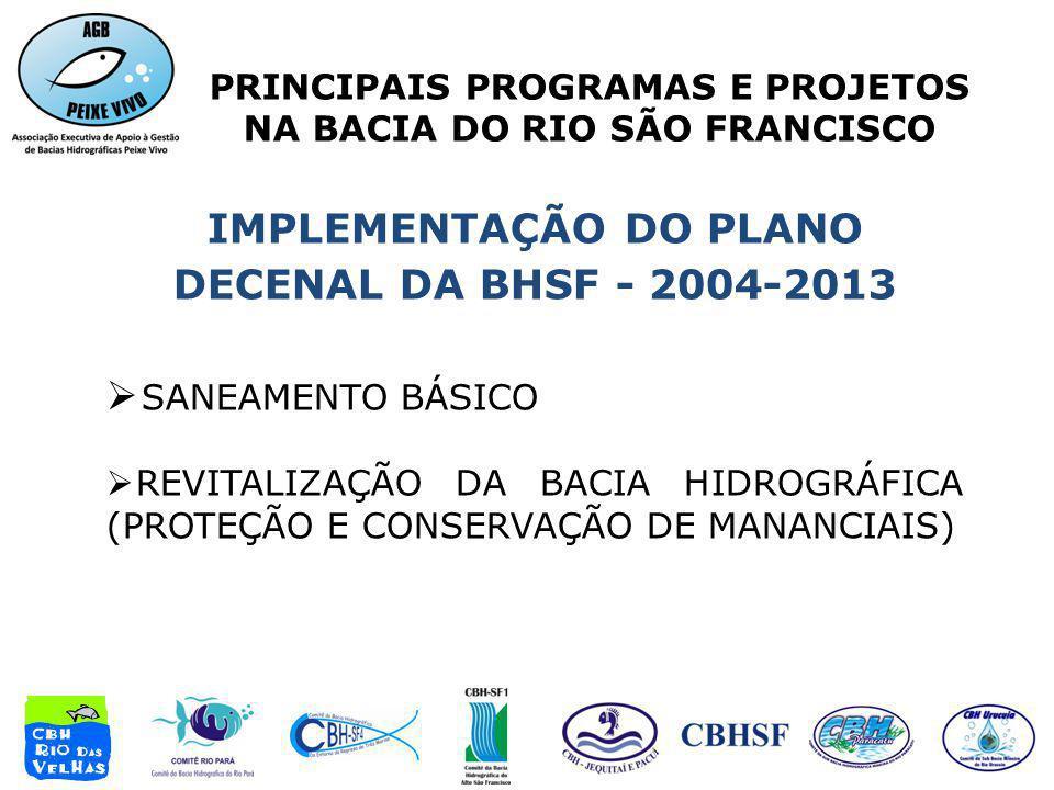 IMPLEMENTAÇÃO DO PLANO DECENAL DA BHSF - 2004-2013