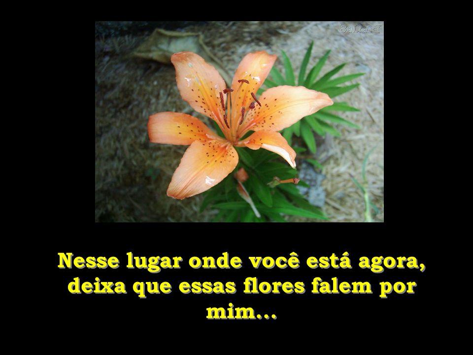 Nesse lugar onde você está agora, deixa que essas flores falem por mim...