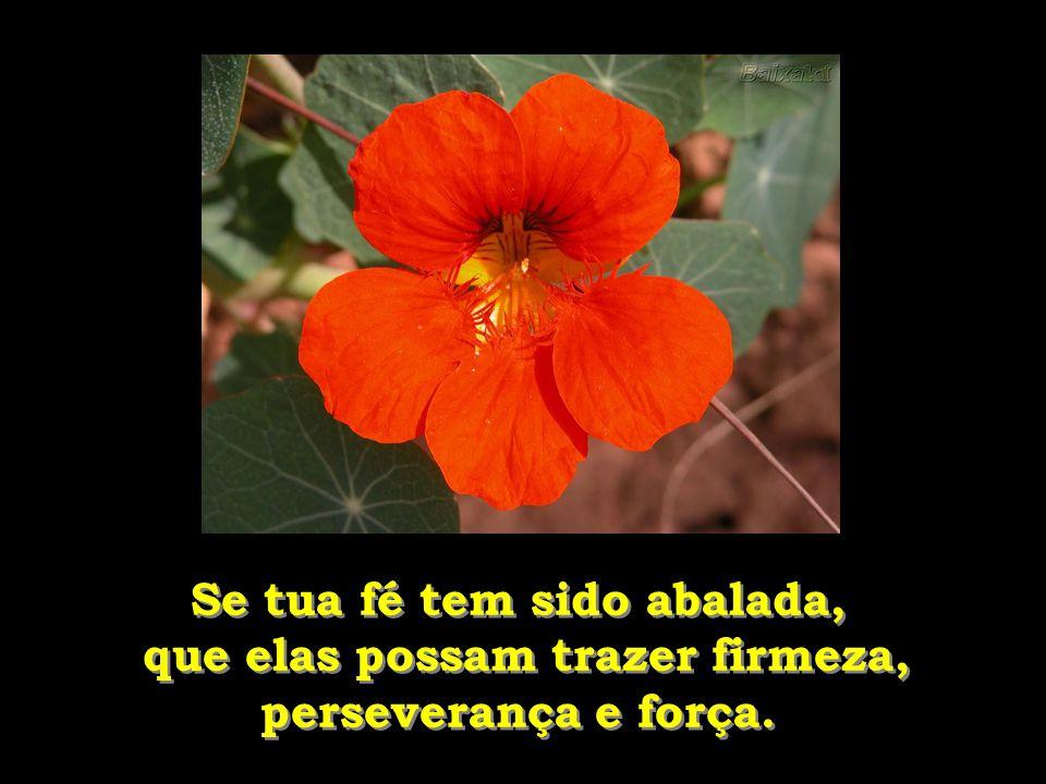 Se tua fé tem sido abalada, que elas possam trazer firmeza,