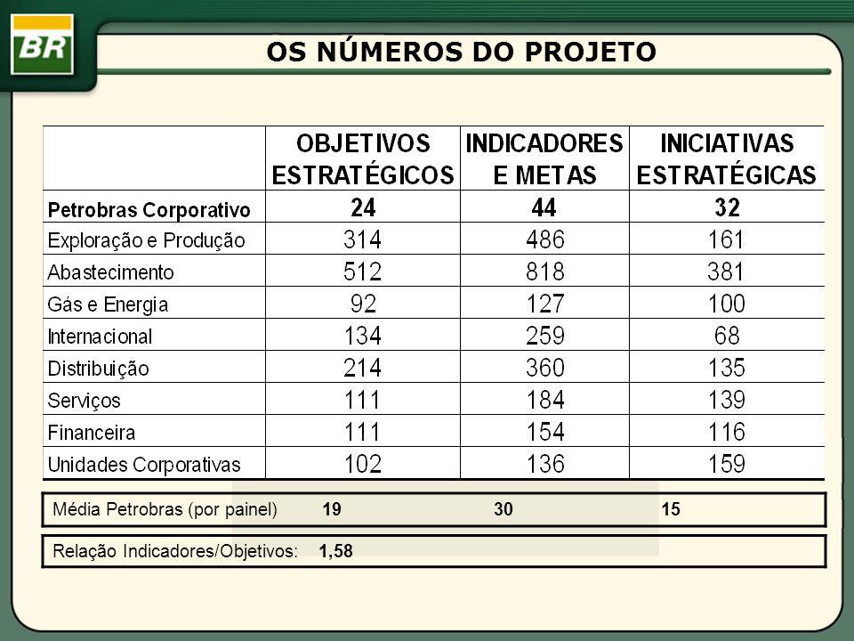 OS NÚMEROS DO PROJETO Média Petrobras (por painel) 19 30 15