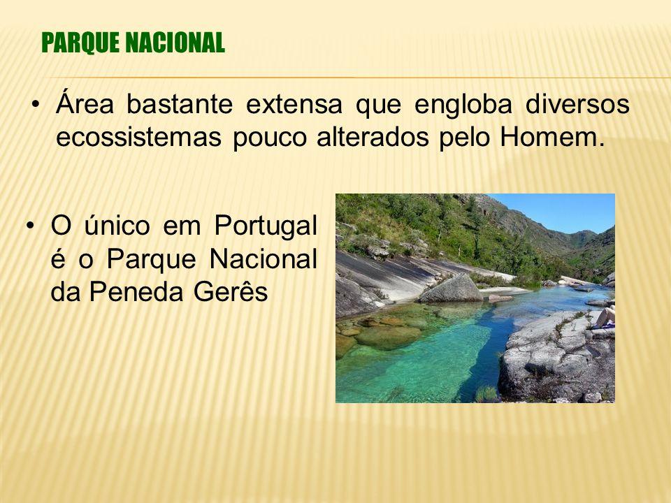 O único em Portugal é o Parque Nacional da Peneda Gerês