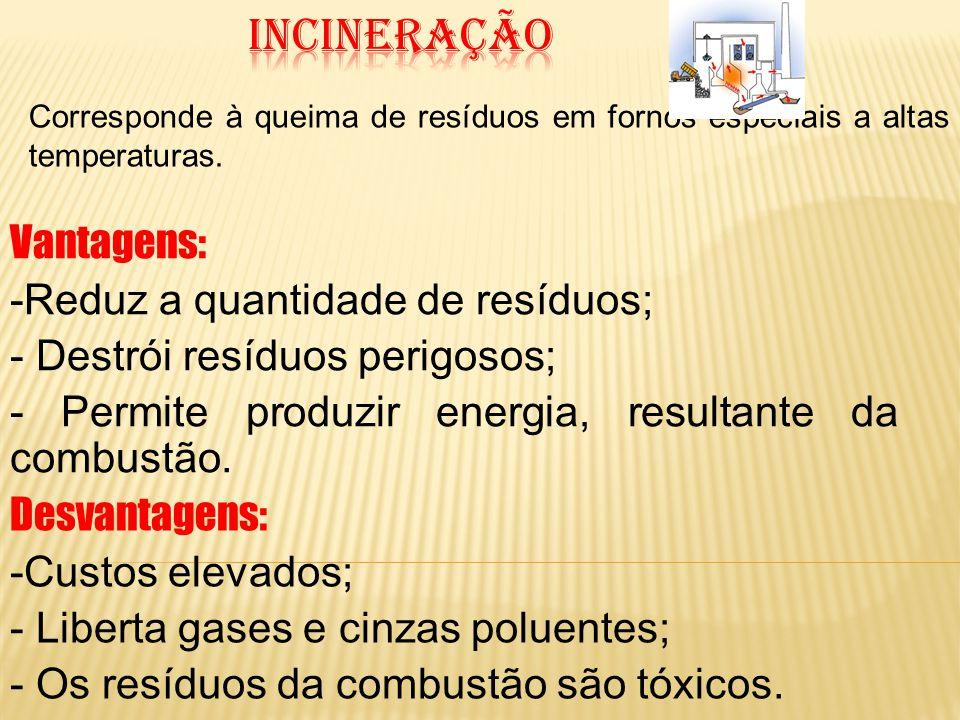 incineração Vantagens: Reduz a quantidade de resíduos;