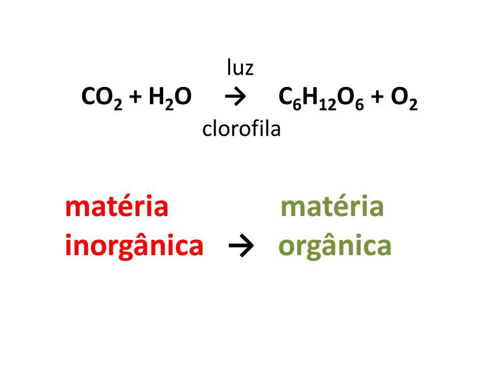 matéria matéria inorgânica → orgânica CO2 + H2O → C6H12O6 + O2 luz