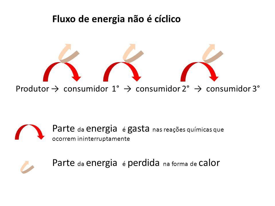 Fluxo de energia não é cíclico