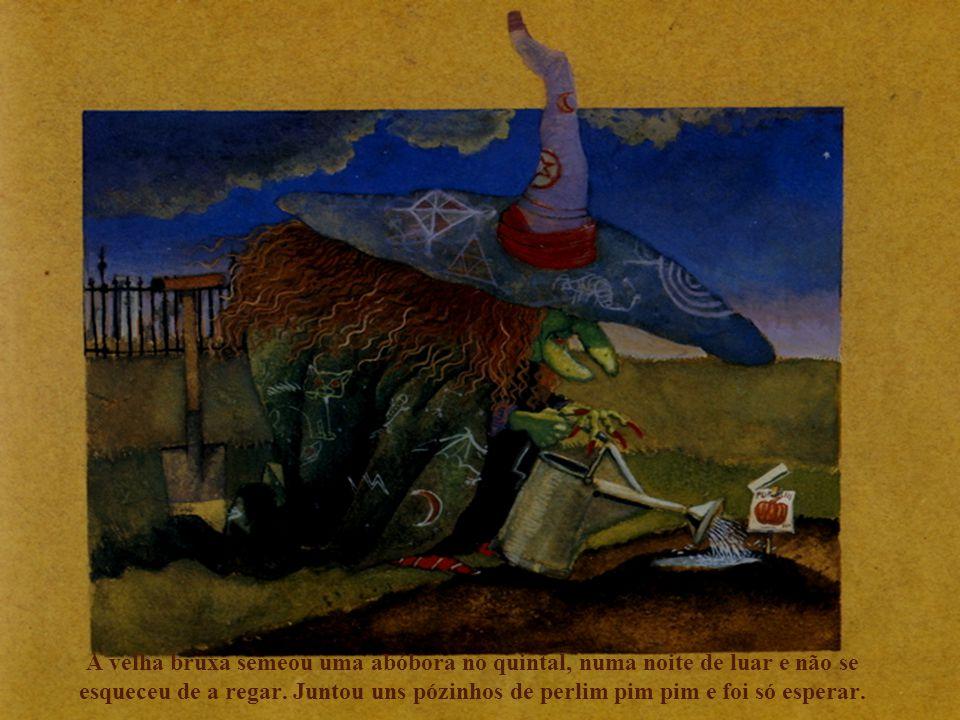 A velha bruxa semeou uma abóbora no quintal, numa noite de luar e não se esqueceu de a regar.