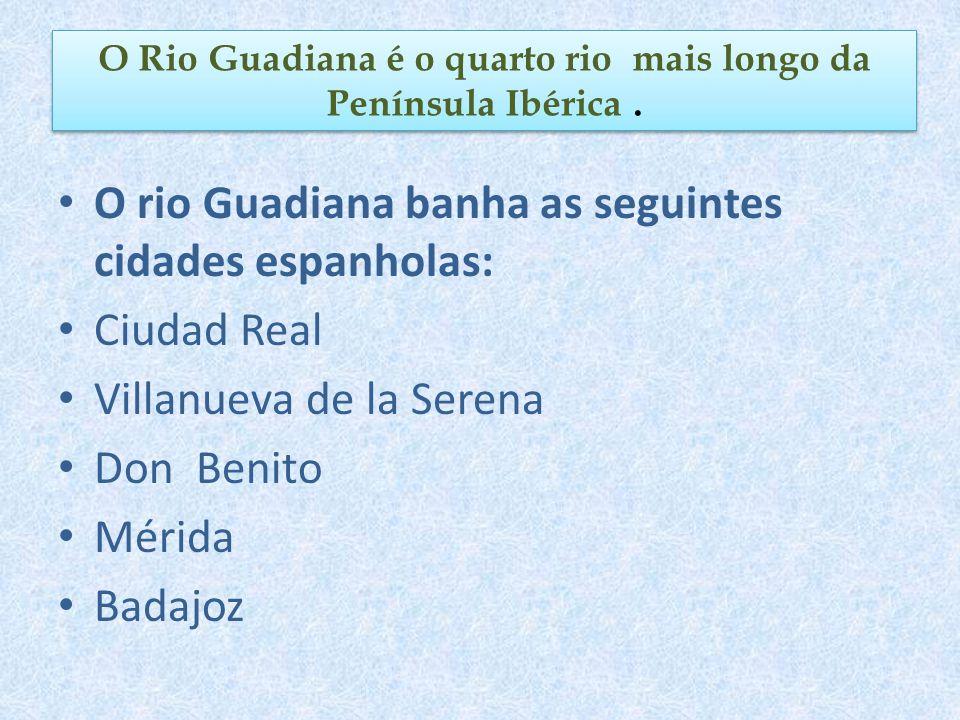 O Rio Guadiana é o quarto rio mais longo da Península Ibérica .