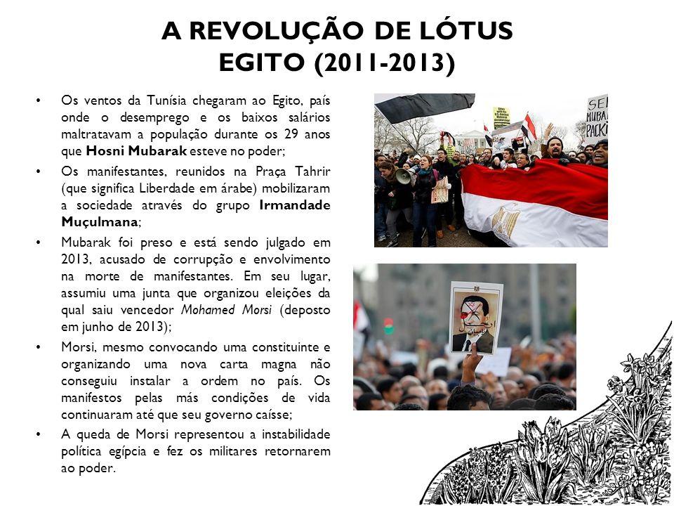 A REVOLUÇÃO DE LÓTUS EGITO (2011-2013)