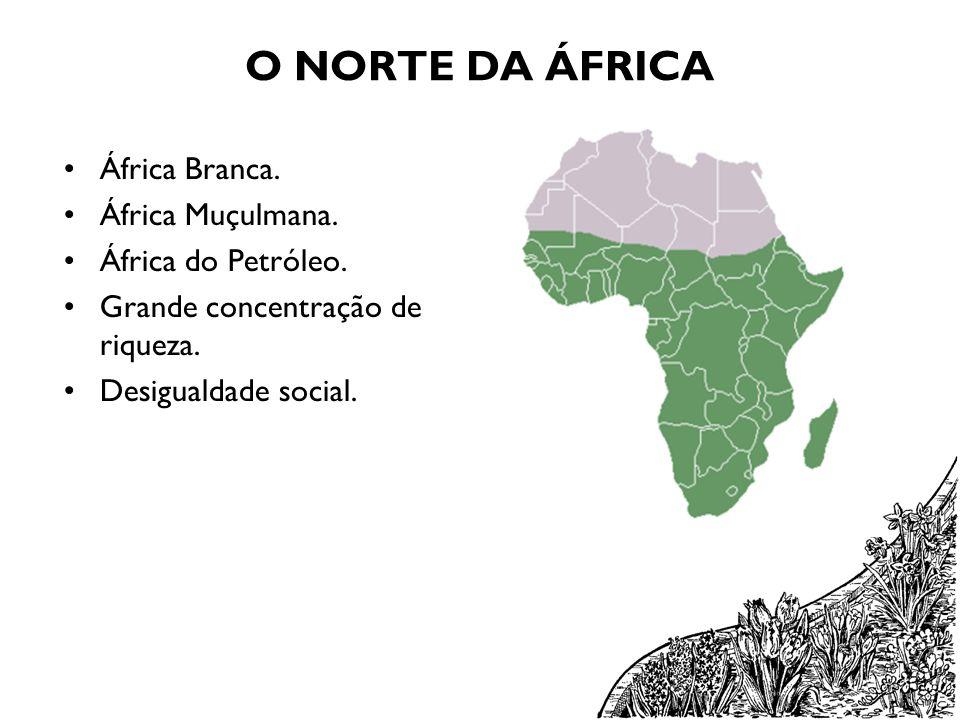 O NORTE DA ÁFRICA África Branca. África Muçulmana. África do Petróleo.