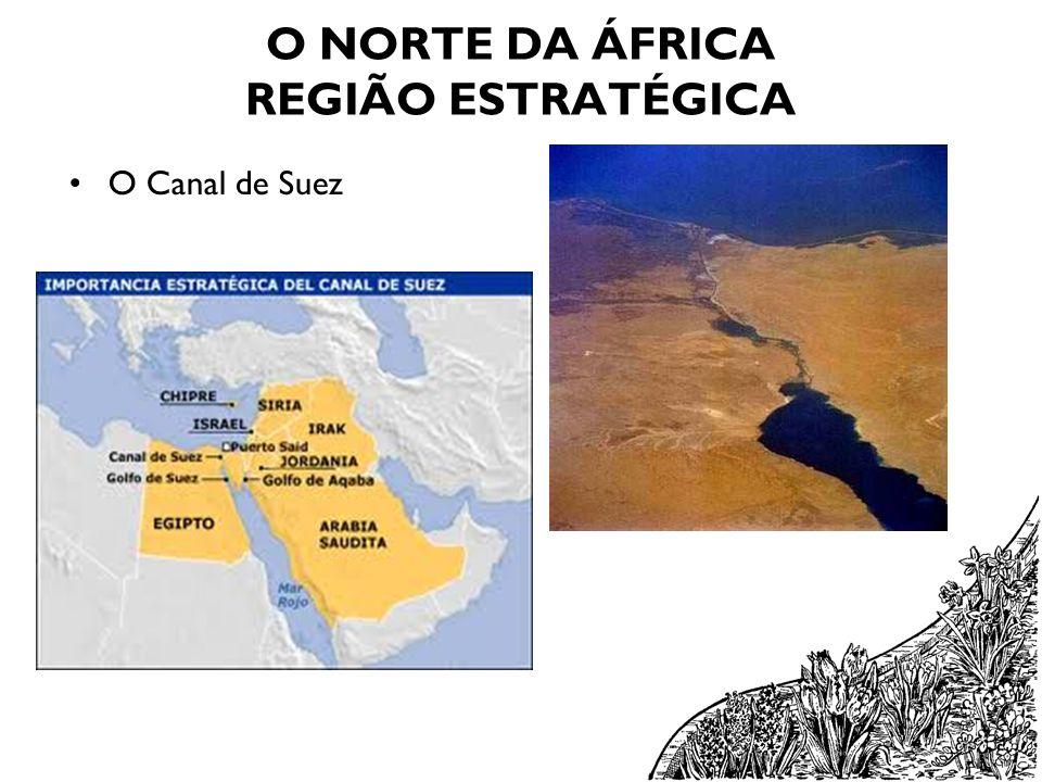 O NORTE DA ÁFRICA REGIÃO ESTRATÉGICA