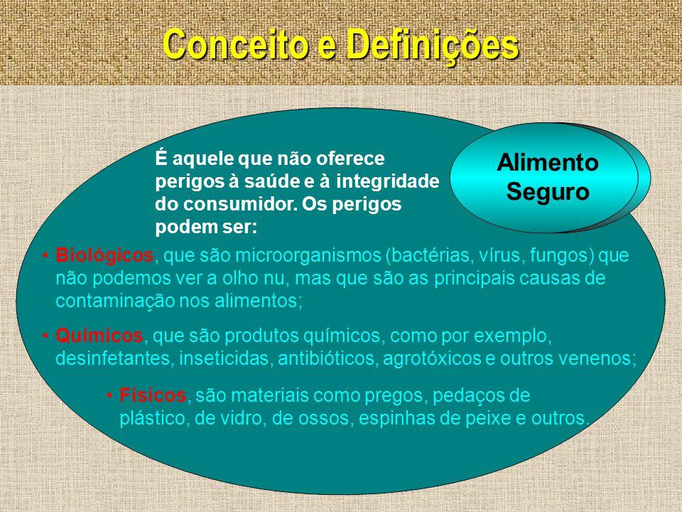 Conceito e Definições Alimento Seguro