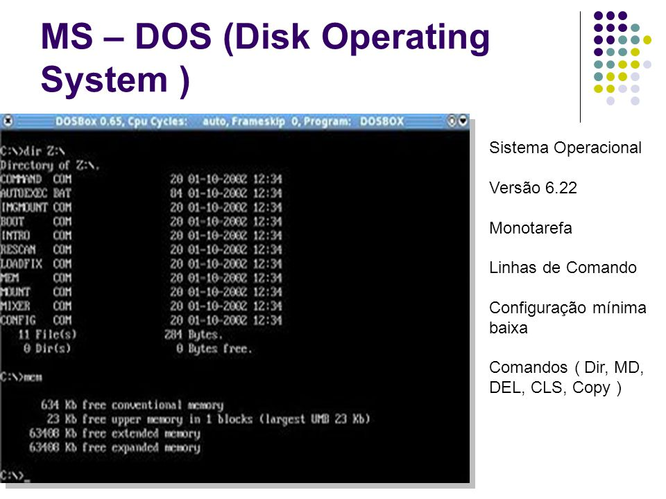 MS – DOS (Disk Operating System )