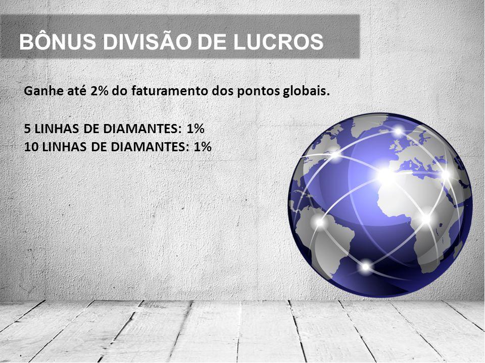 BÔNUS DIVISÃO DE LUCROS