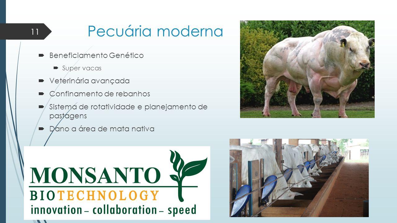 Pecuária moderna Beneficiamento Genético Veterinária avançada