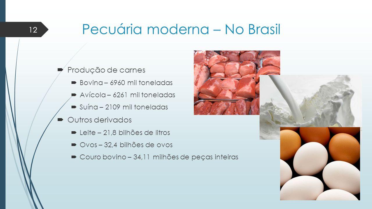 Pecuária moderna – No Brasil