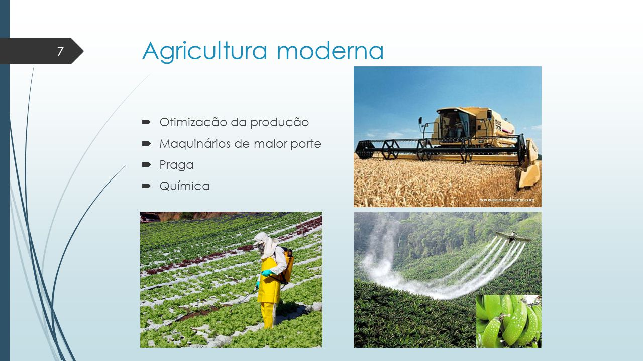 Agricultura moderna Otimização da produção Maquinários de maior porte