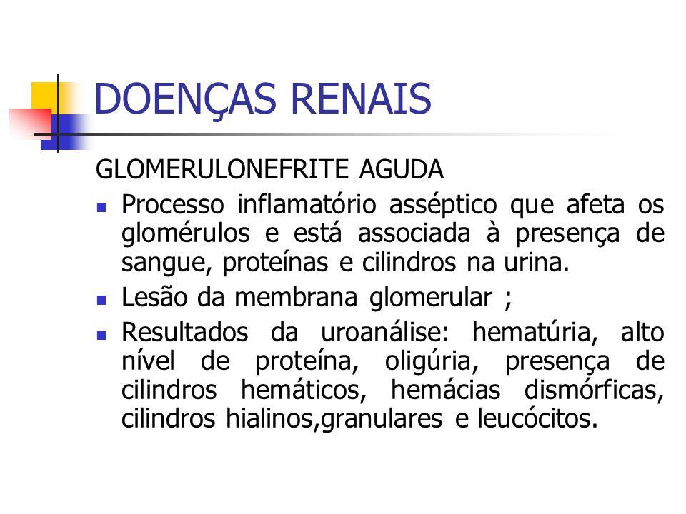 DOENÇAS RENAIS GLOMERULONEFRITE AGUDA