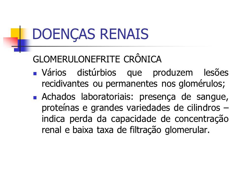DOENÇAS RENAIS GLOMERULONEFRITE CRÔNICA
