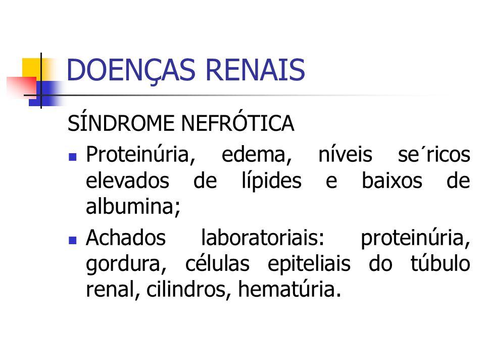 DOENÇAS RENAIS SÍNDROME NEFRÓTICA