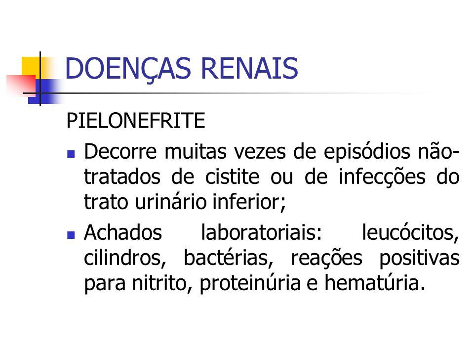 DOENÇAS RENAIS PIELONEFRITE