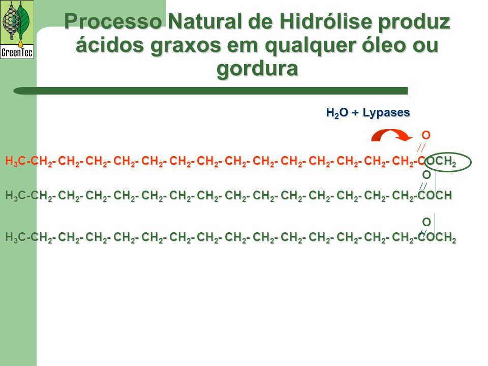 Processo Natural de Hidrólise produz ácidos graxos em qualquer óleo ou gordura