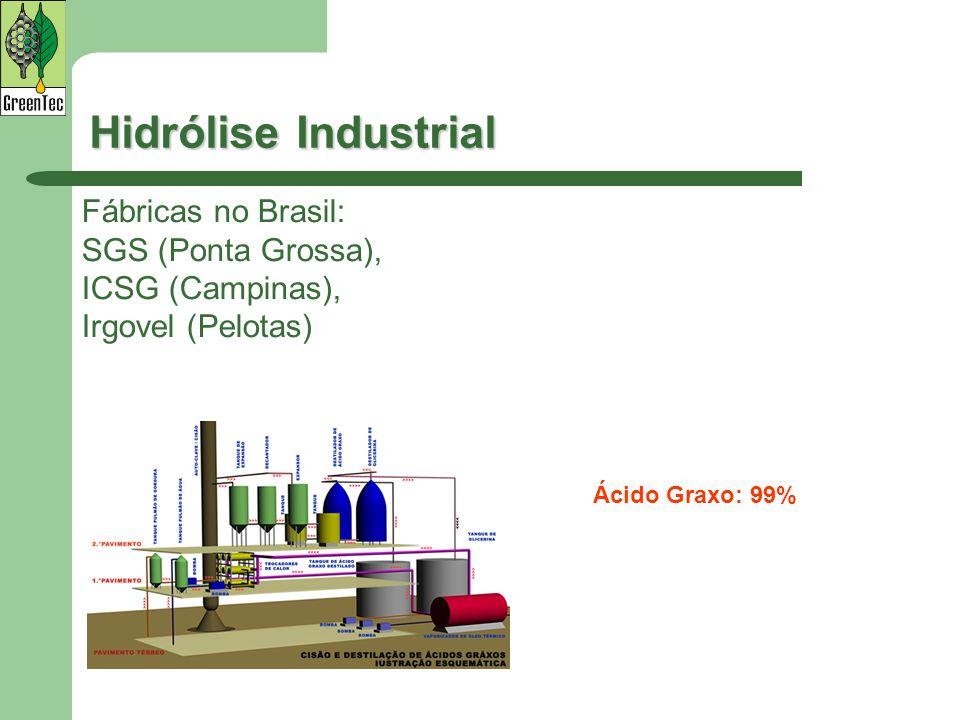 Hidrólise Industrial Fábricas no Brasil: SGS (Ponta Grossa),