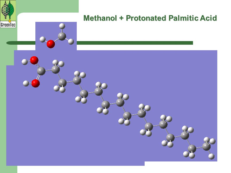 Methanol + Protonated Palmitic Acid