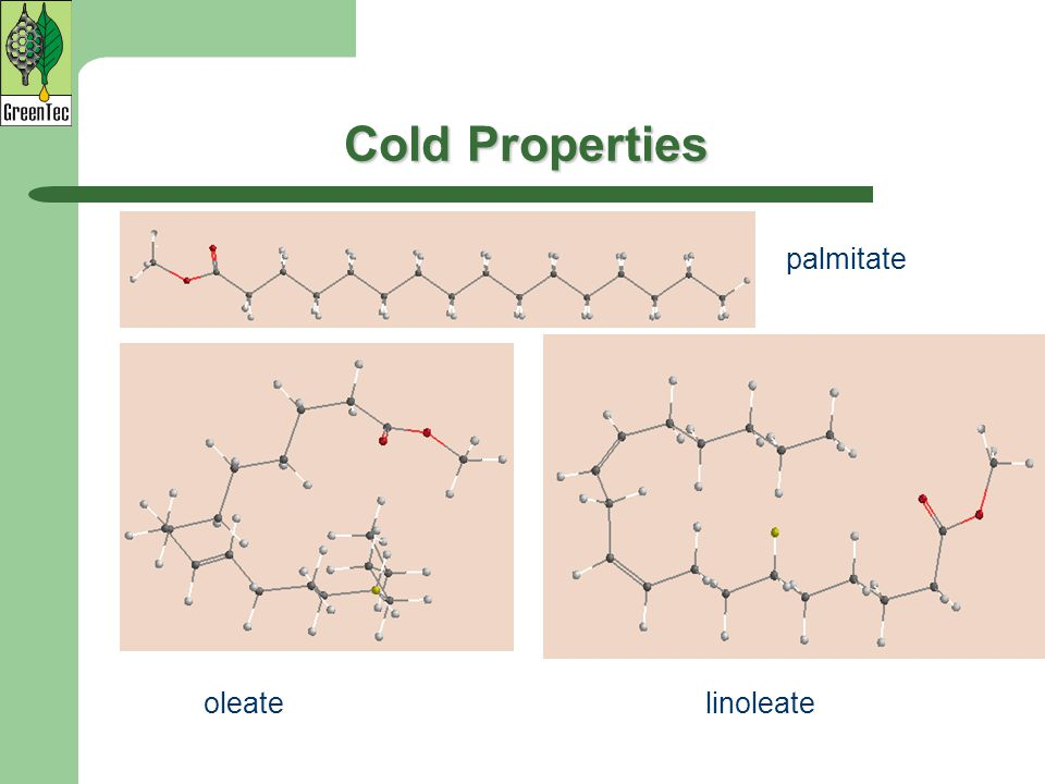 Cold Properties palmitate oleate linoleate