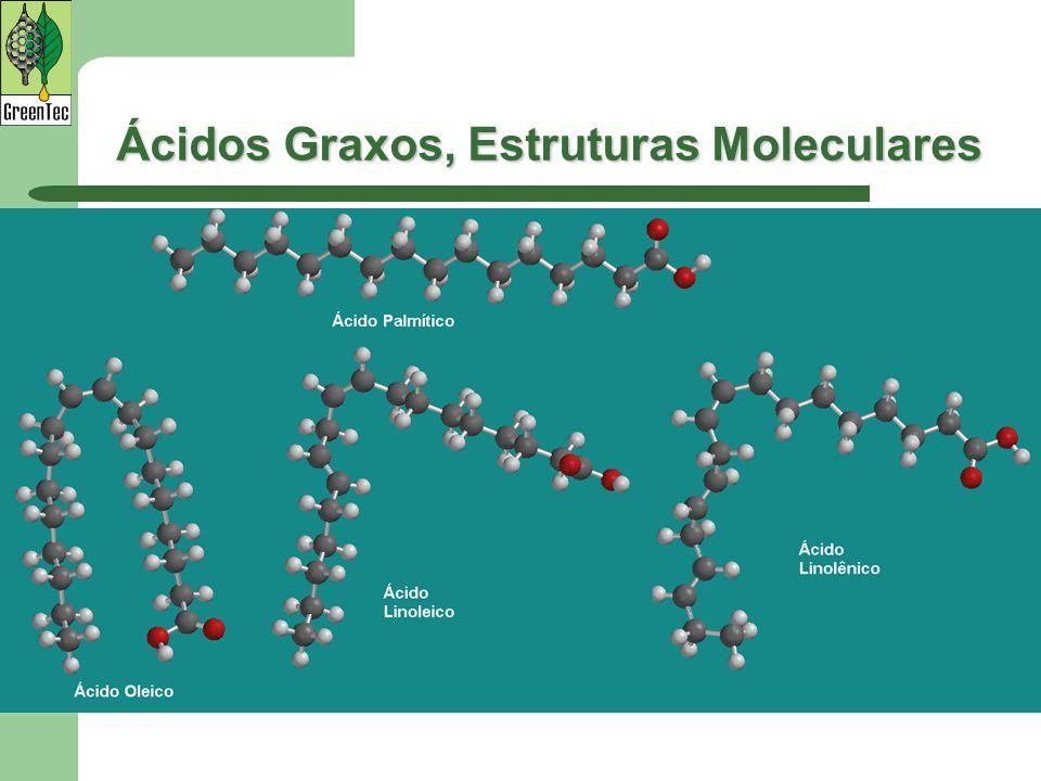 Ácidos Graxos, Estruturas Moleculares