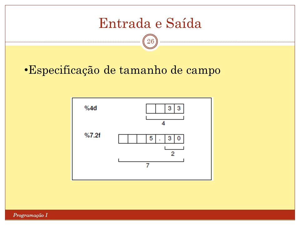 Entrada e Saída Especificação de tamanho de campo Programação I
